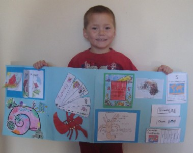 Lapbook - Exploring the Ocean with a Hermit Crab